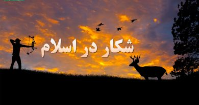 شکار در اسلام