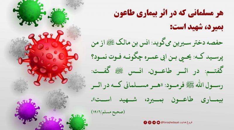هر مسلمانی که در اثر بیماری طاعون بمیرد، شهید است